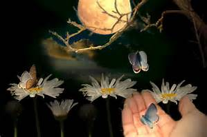 vlinder,hand en maan